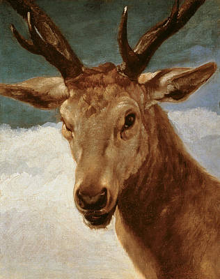 Wild Animals Painting - Head Of A Stag by Diego Rodriguez de Silva y Velazquez