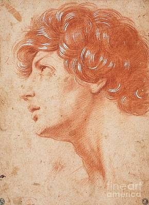 Italian School Painting - Head Of A Young Man by MotionAge Designs