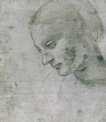 Head Of A Young Woman Or Head Of The Virgin Art Print by Leonardo da Vinci
