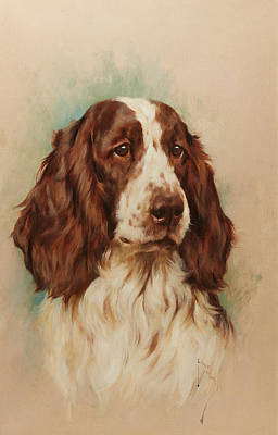 Pooch Painting - Head Of An English Springer Spaniel by Arthur Wardle