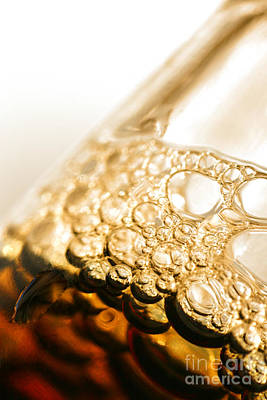 Beer Photos - Head Of Beer by Jorgo Photography - Wall Art Gallery