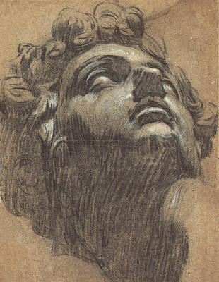 Drawing - Head Of Giuliano De' Medici by Tintoretto