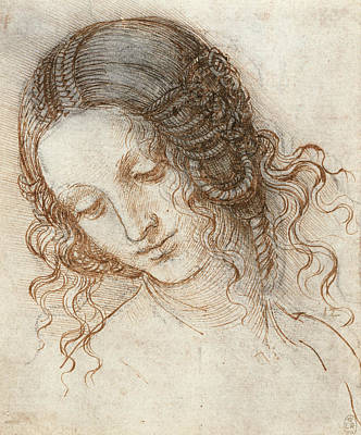 Drawing - Head Of Leda by Leonardo da Vinci