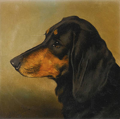 Dog Study Painting - Head Study Of A Dachshund by MotionAge Designs