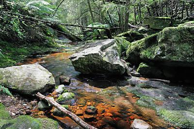 Photograph - Heading Downstream by Nicholas Blackwell