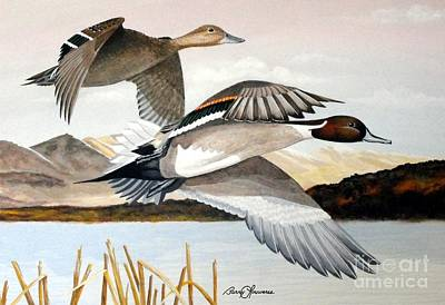 Waterfowl Painting - Heading In - Pintail Pair by Barry Louwerse