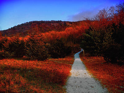 Photograph - Heading Up Mount Wawayanda  by Raymond Salani III
