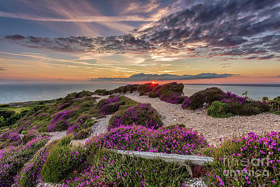 Manateevoyager Photograph - Headon Hill Sunset by Wight Landscapes