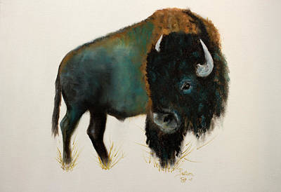 Painting - Heal My Spirit Buffalo by Barbie Batson