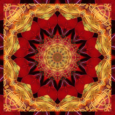 Spiritual. Geometric Photograph - Healing Mandala 28 by Bell And Todd
