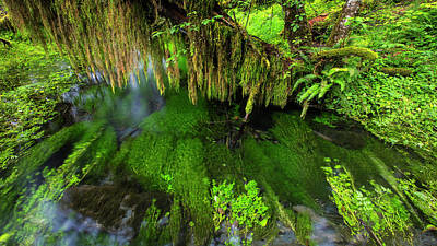 Into Art Photograph - Healing Waters by Stephen Stookey