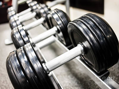 Healthclub Free Weights On A Rack Print by Paul Velgos