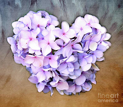 Photograph - Heart Hydrangea by Clare VanderVeen