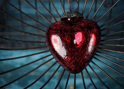 Red Heart Photograph - Heart In Cage by Nailia Schwarz