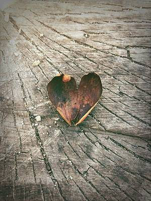 Bob Ross Photograph - Heart In The Woods by Robert Chambers