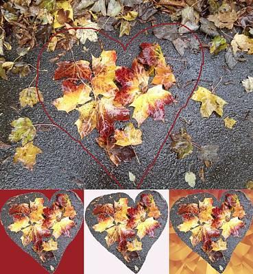 Mixed Media - Heart Leaf Group 1 Photo Art by Julia Woodman