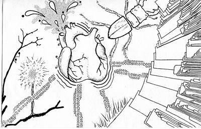Heart Of Evolution Art Print