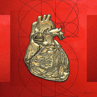 Heart Of Gold Digital Art - Heart Of Gold - Golden Human Heart On Red Canvas by Serge Averbukh