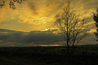 Photograph - Heart Of Gold by Ian Thompson