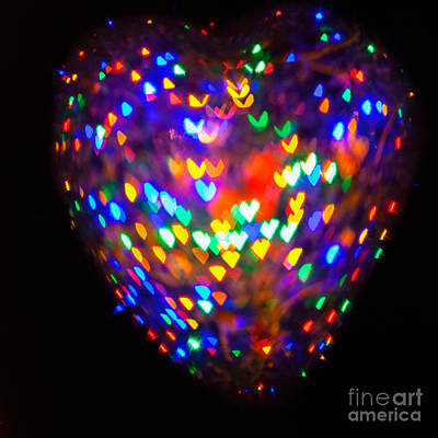 Photograph - Heart Of Hearts by Diane Macdonald