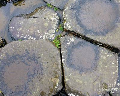 Photograph - Heart Of The Giants Causeway by Barbie Corbett-Newmin