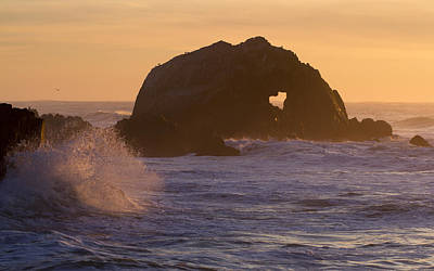 Photograph - Heart Of The Ocean by Nathan Rupert