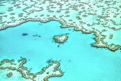 Aerial Photograph - Heart Of The Reef by Az Jackson