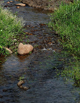 Photograph - Heart Of The Stream by Pamela Walton