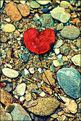 Heart On The Rocks Art Print by Susie Weaver