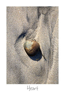 Photograph - Heart by Peter Tellone