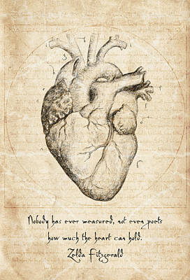 Drawing - Heart Quote By Zelda Fitzgerald by Taylan Apukovska