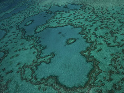 Photograph - Heart Reef by Jocelyn Kahawai