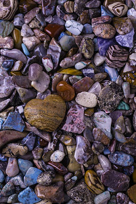 Heart Shaped Rock Photograph - Heart Rock Among Colorful Stones by Garry Gay
