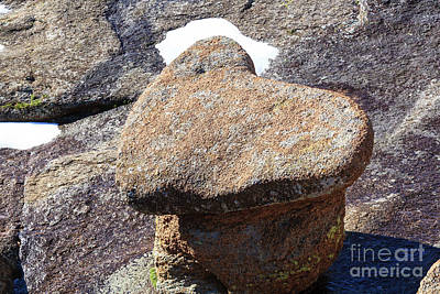 Photograph - Heart Rock by Richard Smith
