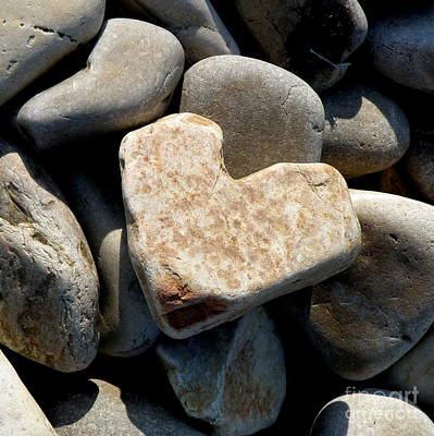 Heart Stone Art Print by Lainie Wrightson