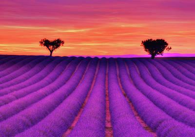 Provence Photograph - Hearts Of Rainbow by Midori Chan