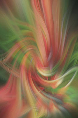 Blend Photograph - Heat Stroke by Linda Phelps