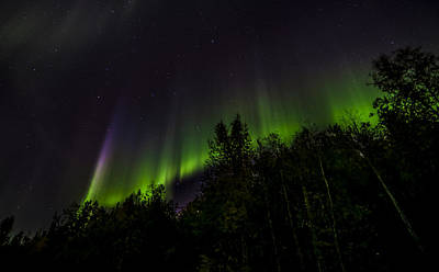 Robin Williams Photograph - Heavenly Aurora by Robin Williams