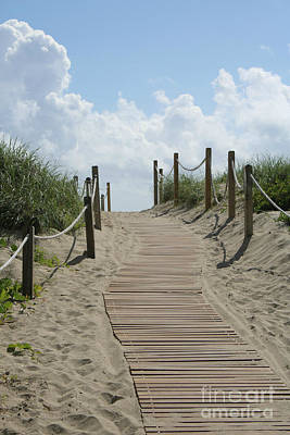 Photograph - Heavenly Beach Path by Carol Groenen