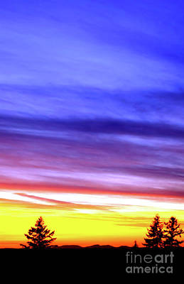Photograph - Heavenly Blue by Victor K