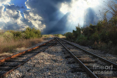 Photograph - Heavenly Decision by Dale Powell