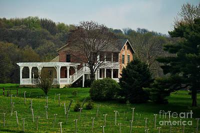 Oregon Illinois Photograph - Heavenly Farmstyle Vineyard by Laura Birr Brown