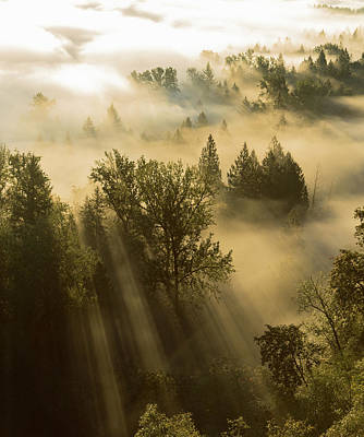 Pacificnorthwest Photograph - Heavenly Light.  by David Priymak