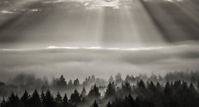 Photograph - Heavenly Light by Don Schwartz
