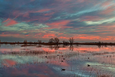 Photograph - Heavenly Sunrise by Kathleen Bishop