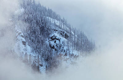 Photograph - Heavenly Winterland by Jonathan Nguyen