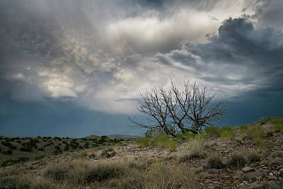 Photograph - Heavy Clouds No Rain by Mary Lee Dereske