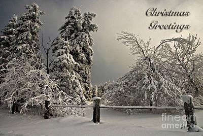 Heavy Laden Christmas Card Art Print by Lois Bryan