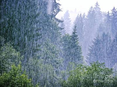 Designers Choice Photograph - Heavy Rain In The Wild by GabeZ Art