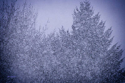Photograph - Heavy Snow by Mick Anderson
